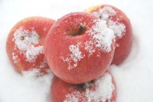 雪中りんごイメージ